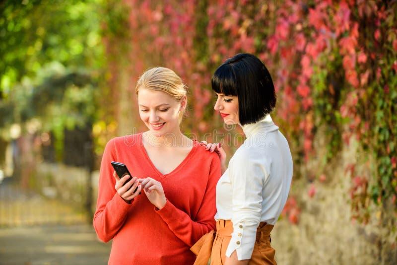 Achetez en ligne Partager le lien Technologie moderne Internet surfant Communication en ligne Filles communiquant regarder image stock