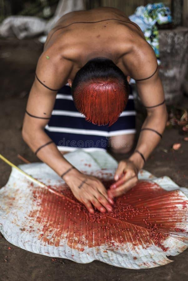 Achiote印地安人Los Tsachila部落,厄瓜多尔发型  库存图片