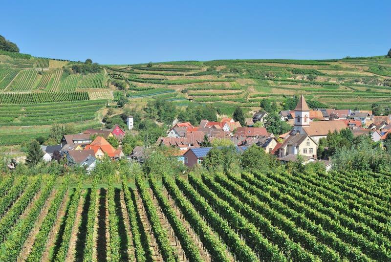Achkarren, região do vinho de Kaiserstuhl, Floresta Negra, Alemanha fotos de stock