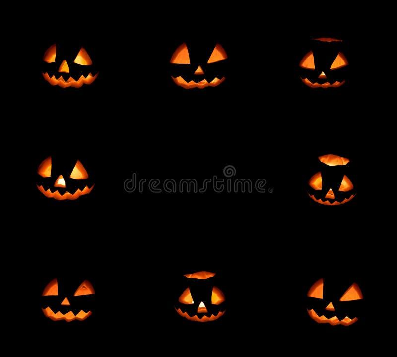 Acht Halloween-pompoenenkader op zwarte stock afbeelding
