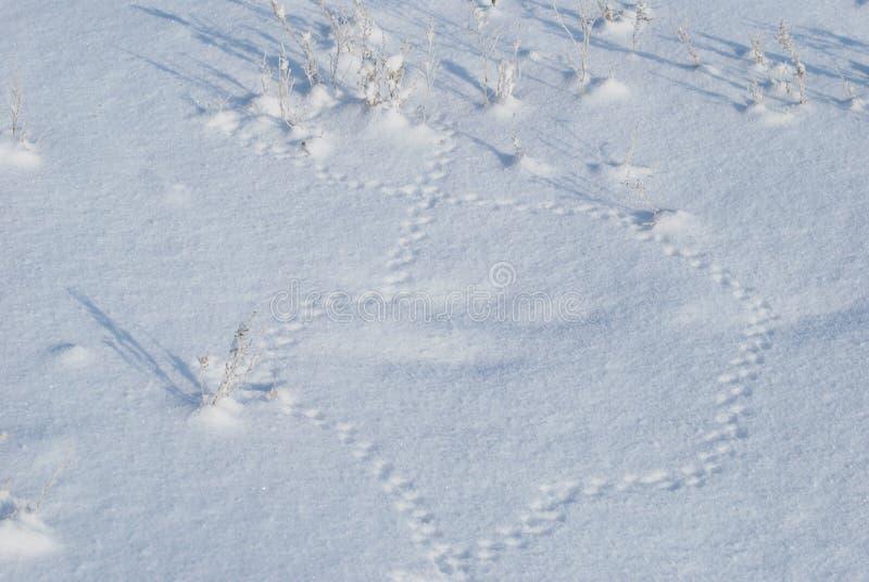 Acht op een sneeuw van muissporen royalty-vrije stock afbeelding