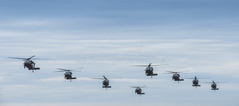 Acht schwarze Falkehubschrauber stockfotografie