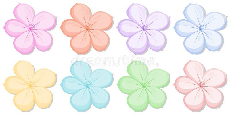 Acht vijf-bloemblaadje bloemen in verschillende kleuren stock illustratie