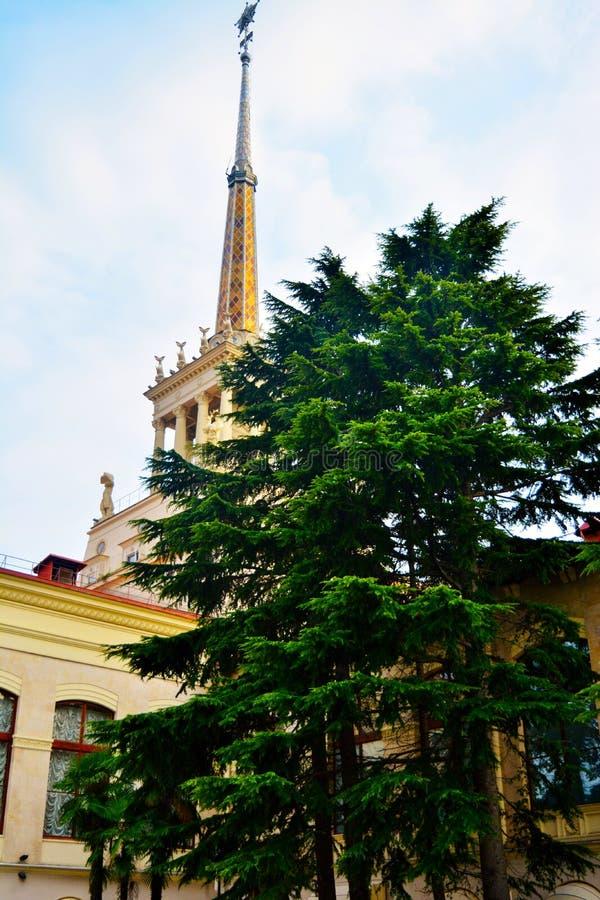 Achter het boomgebouw met een spits stock afbeeldingen