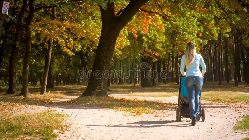 Achterdiemening van jonge vrouw met babykinderwagen wordt geschoten die onder de herfstbomen lopen in park royalty-vrije stock foto