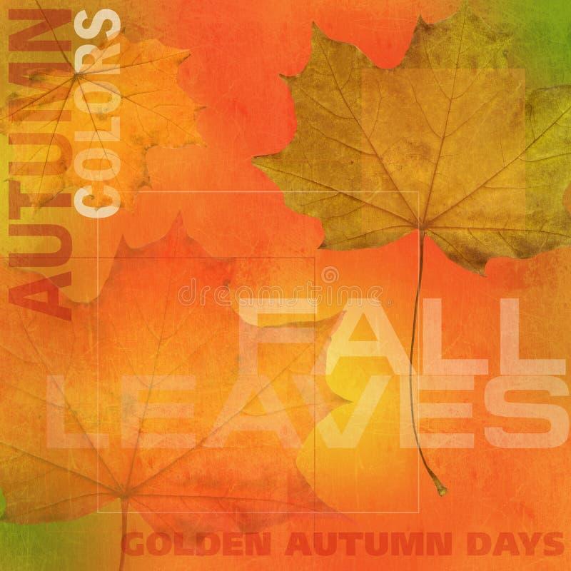 Achtergrond 2 van de herfst stock illustratie