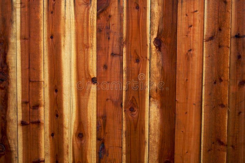 Achtergrond 2 van de Omheining van de Californische sequoia royalty-vrije stock afbeeldingen