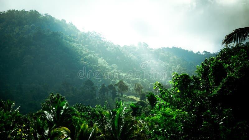 Achtergrond, aard, zonlicht, mistig berglandschap met sunb royalty-vrije stock afbeeldingen