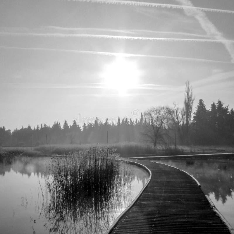Achtergrond met bevroren het lopen weg op een de wintermeer met ruimte voor tekst stock afbeeldingen
