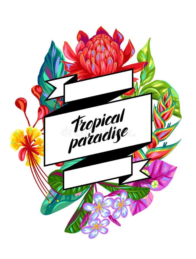Achtergrond met de bloemen van Thailand Tropische veelkleurige installaties, bladeren en knoppen vector illustratie