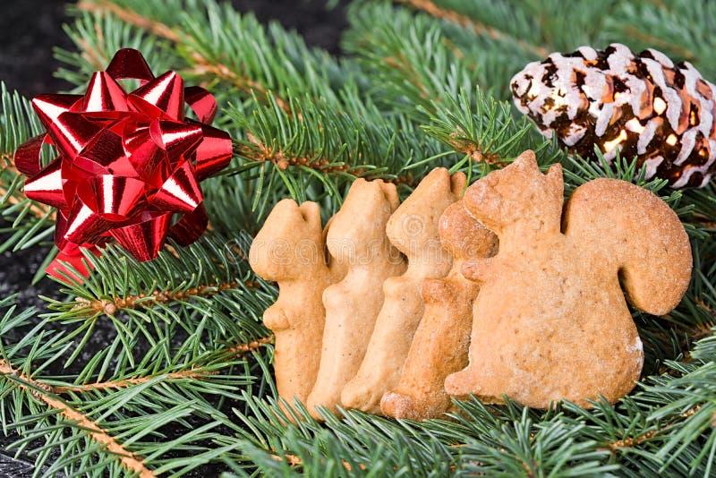 Achtergrond met de peperkoek van Kerstmiskoekjes Centraal in de kadercake in de vorm van een eekhoorn stock foto's
