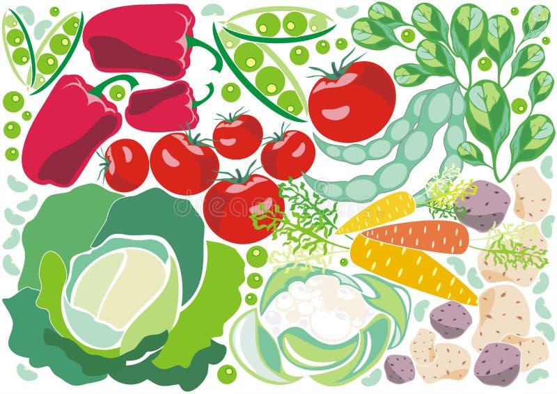 achtergrond met decoratieve verse groenten stock illustratie