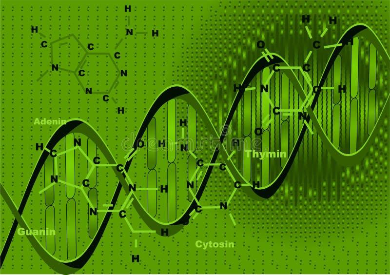 Achtergrond met DNA royalty-vrije illustratie
