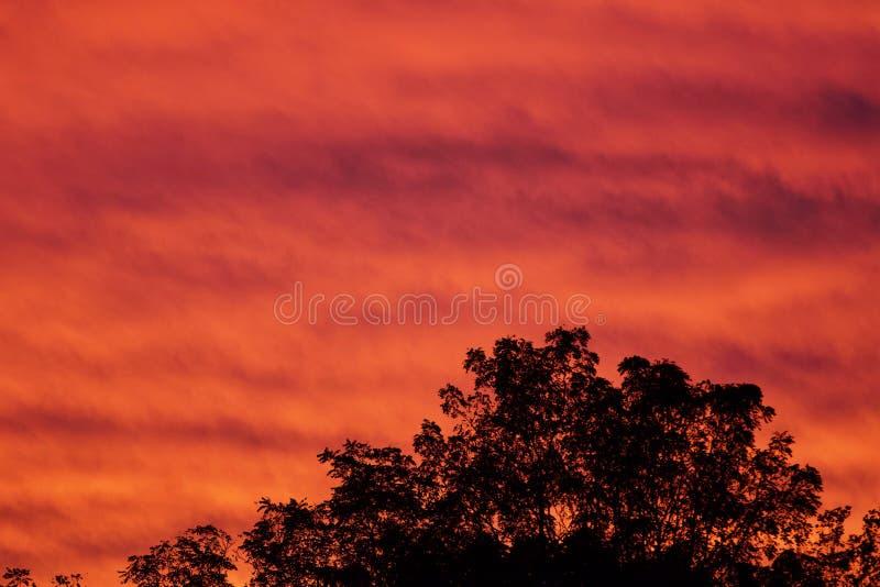 Achtergrond met een mooie levendige hemel bij zonsondergang royalty-vrije stock foto's