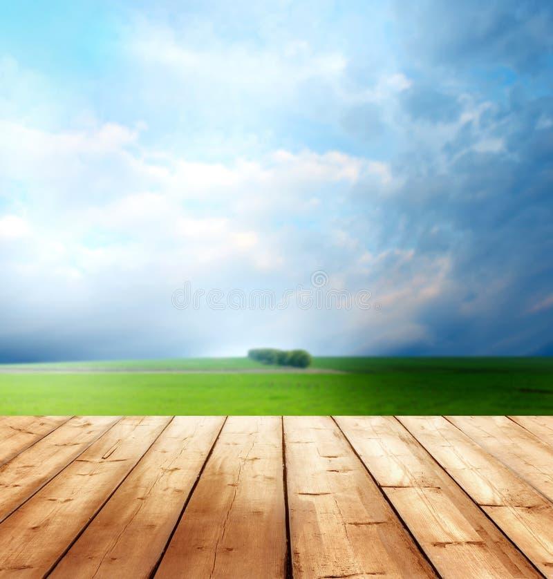Achtergrond met houten planken royalty-vrije stock foto's