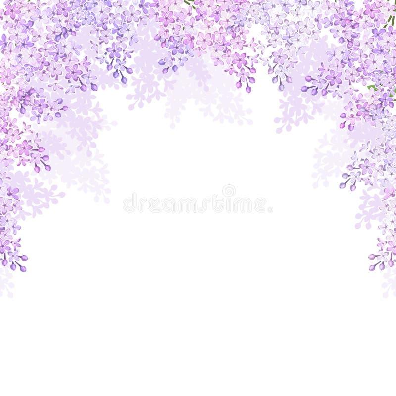 Achtergrond met lilac bloemen Vector illustratie stock illustratie