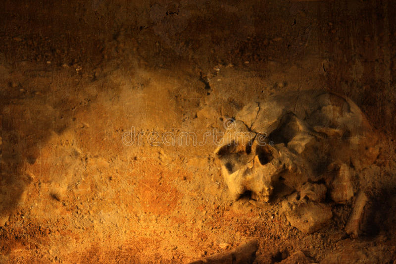 Achtergrond met menselijke schedel royalty-vrije illustratie