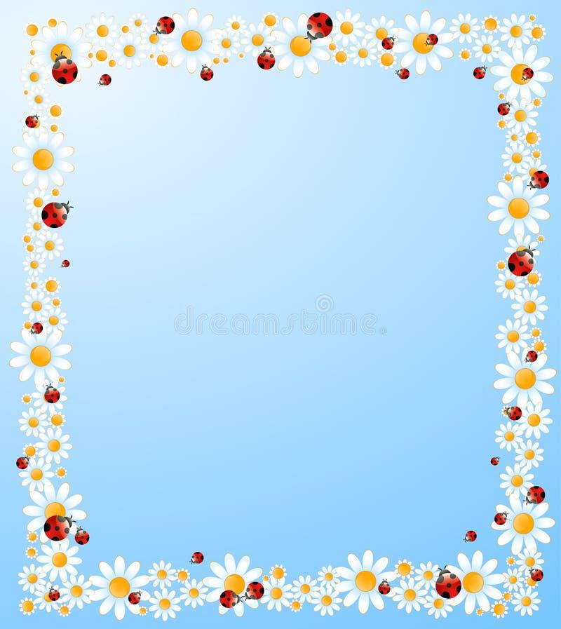 achtergrond met mooie camomil vector illustratie