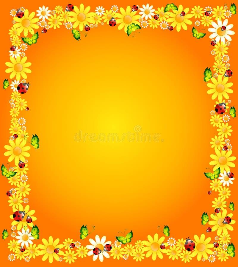 Achtergrond met mooie camomil stock illustratie