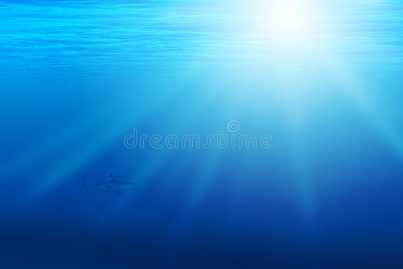 Achtergrond met onderwaterscène stock afbeelding