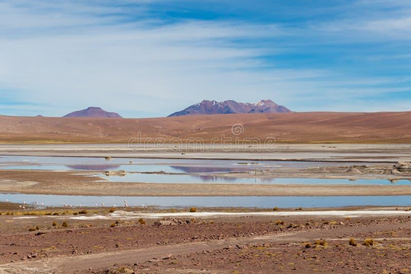 Achtergrond met onvruchtbaar woestijnlandschap in de Boliviaanse Andes, in het Natuurreservaat Edoardo Avaroa stock afbeelding