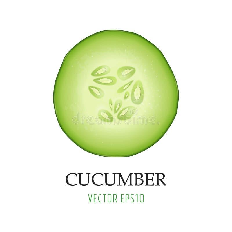 Achtergrond met photo-realistic 3d het pictogramclose-up van de plak sappige die komkommer op wit wordt geïsoleerd Ontwerpmalplaa stock illustratie