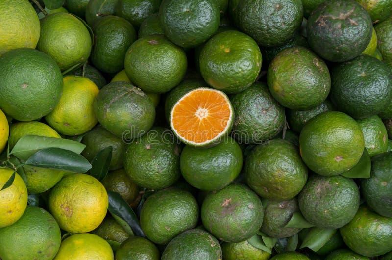 Achtergrond met sinaasappelenfruit in deel 6 wordt gekweekt die van keerkringen stock fotografie