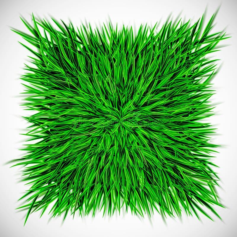 Achtergrond met vierkant van gras royalty-vrije illustratie