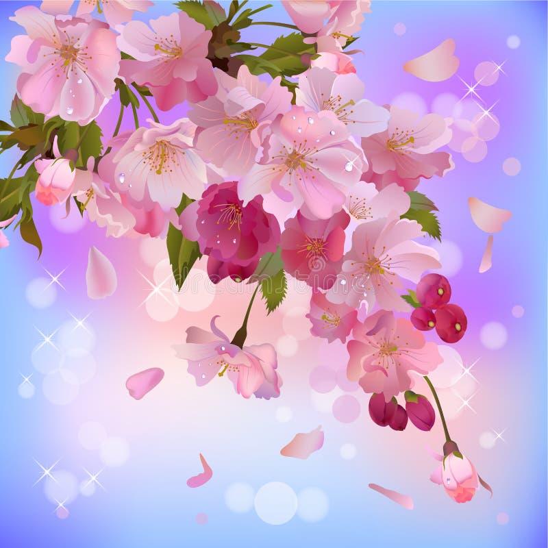 Achtergrond met zachte sakuratak van bloemen stock illustratie