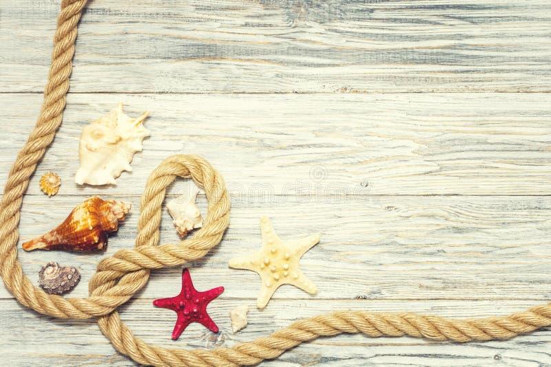 Achtergrond met zeester en mariene kabel royalty-vrije stock afbeeldingen