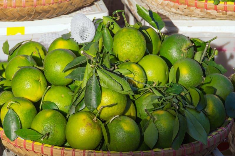 Achtergrond met zoete die sinaasappelenfruit in deel 2 wordt gekweekt van keerkringen royalty-vrije stock fotografie