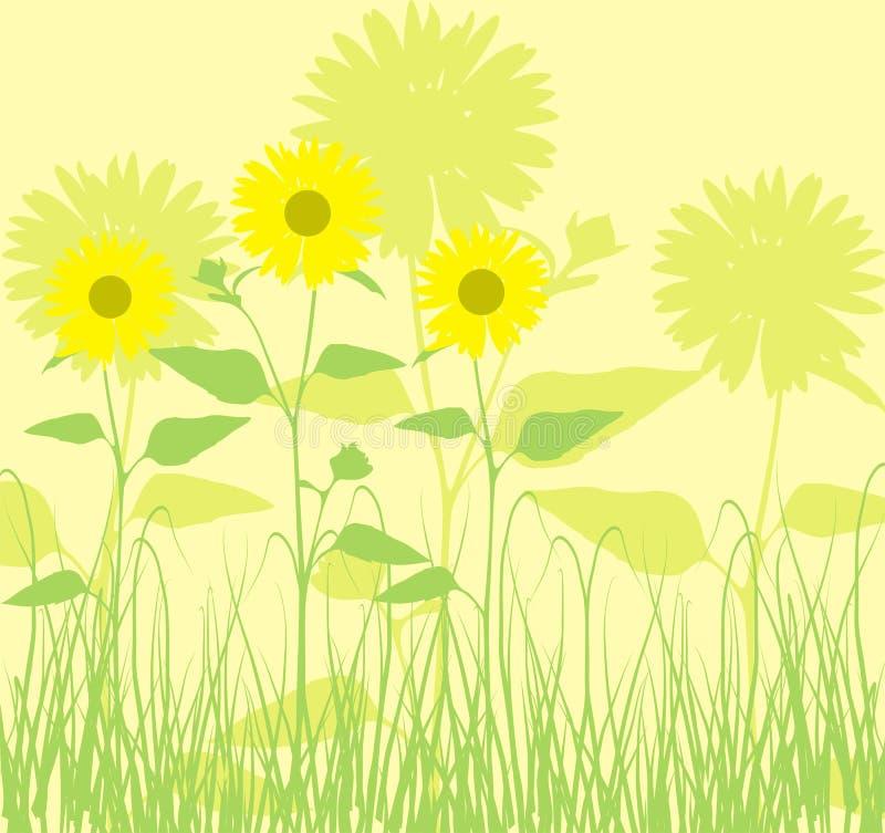 Achtergrond met zonnebloemen, vector royalty-vrije illustratie