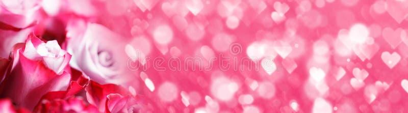 Achtergrond roze roze bloemen royalty-vrije stock fotografie