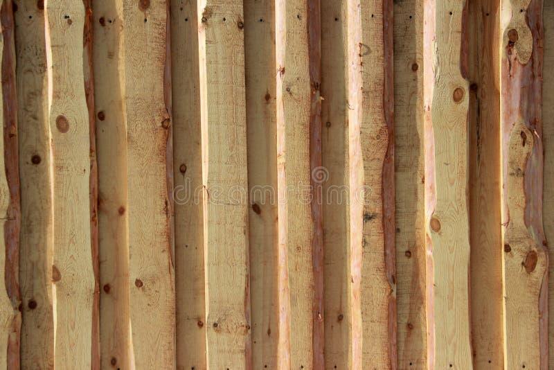 Achtergrond textuur Nieuwe lichte houten die muur van raad wordt gemaakt royalty-vrije stock fotografie