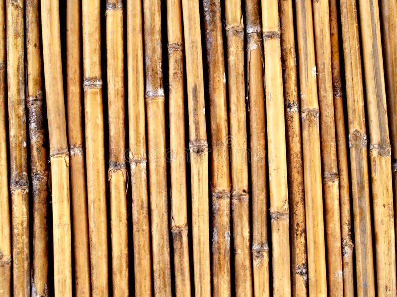 Achtergrond van Bamboe royalty-vrije stock afbeelding