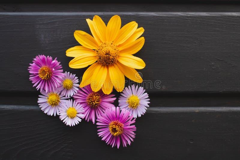 Achtergrond van bloemen op de lijst Multicolored bloemen stock fotografie