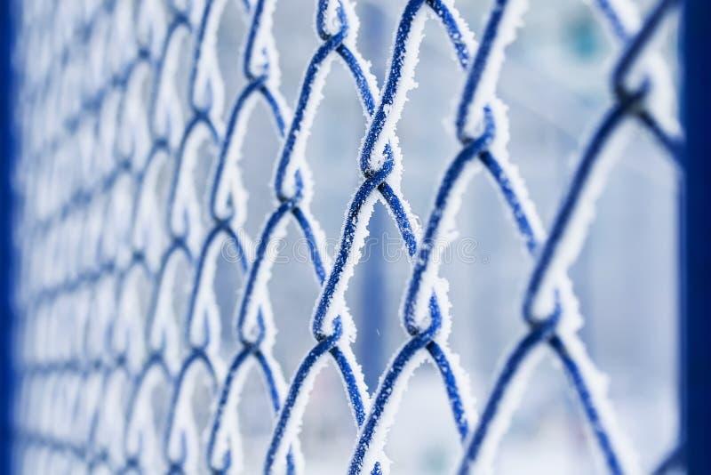Achtergrond van de blauwe die lat van het netmetaal met pluizige witte schreeuw wordt behandeld stock fotografie