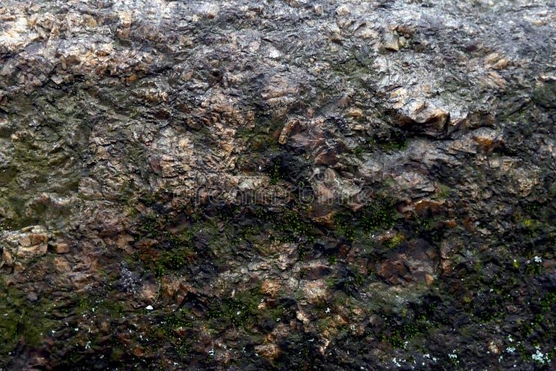 achtergrond van de close-up de oude steen met wat beetjemos stock afbeelding
