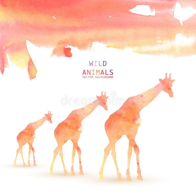 Achtergrond van de giraf de Dierlijke Waterverf stock illustratie