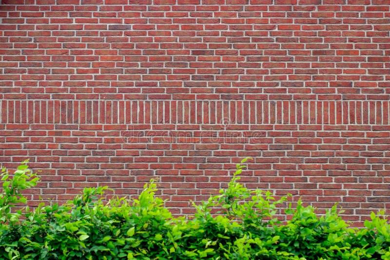 Achtergrond van de Grunge de rode bakstenen muur met exemplaarruimte stock afbeeldingen