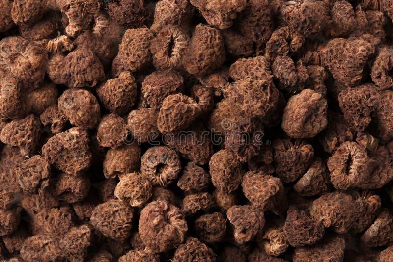 Achtergrond van de huis de droge bruine Framboos geïsoleerde textuur stock foto