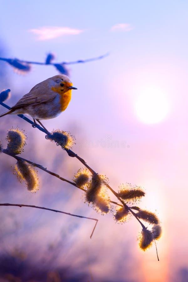 Achtergrond van de kunst de mooie lente royalty-vrije stock fotografie