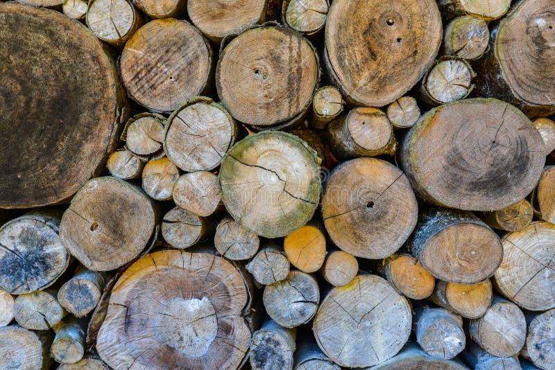 Achtergrond van de logboek de houten muur. stock foto
