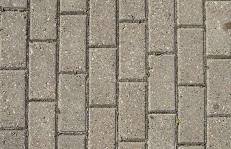 Achtergrond van de steenweg met bladeren Stekelachtergrond stock afbeeldingen