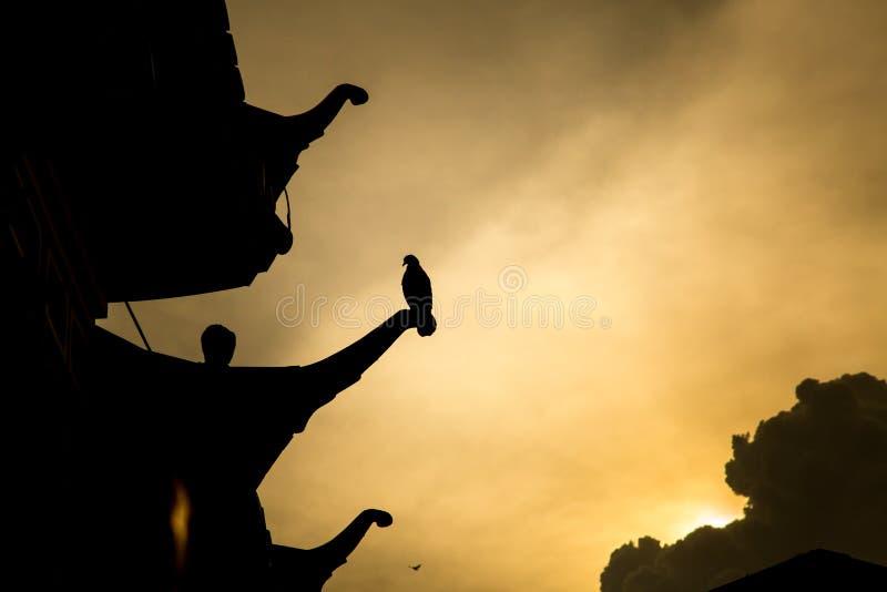 Achtergrond van de zonsondergang royalty-vrije stock afbeelding