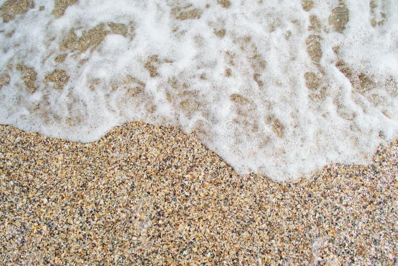 Achtergrond van fragmenten van zeeschalen aan de kust en de zeegolf royalty-vrije stock foto