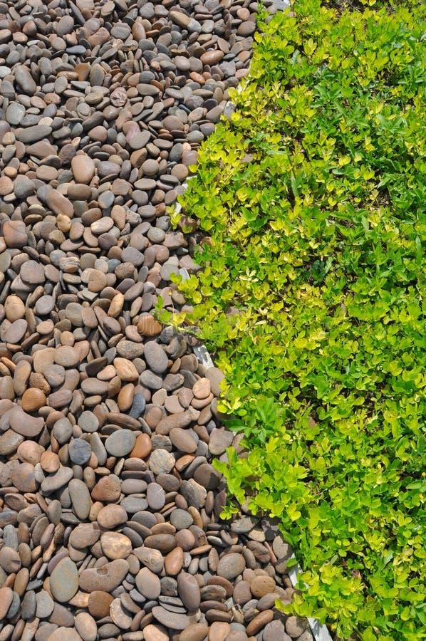 Achtergrond van gras en steen stock fotografie