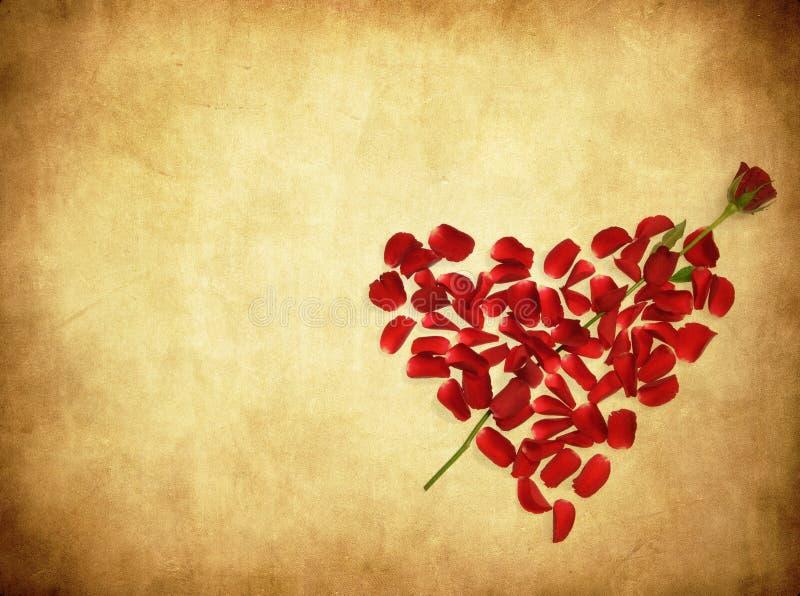 Achtergrond van Grunge met hart gemaakte od nam bloemblaadjes toe vector illustratie
