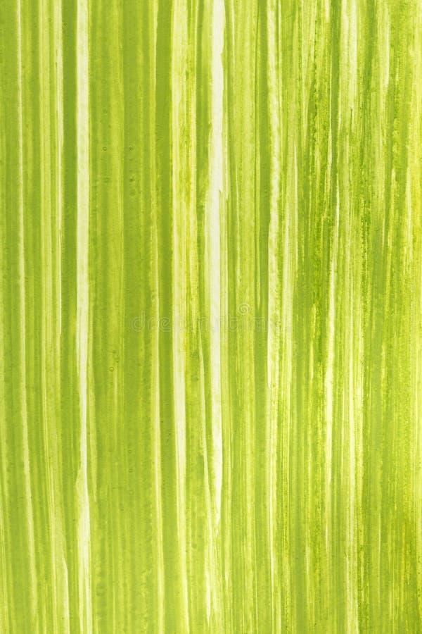 Achtergrond van het de lente de groene die gras met gouache wordt geschilderd stock afbeeldingen