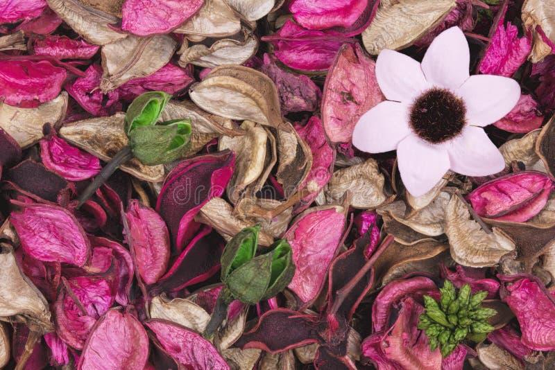Achtergrond van mooie en kleurrijke Rose Scent potpourri royalty-vrije stock afbeelding